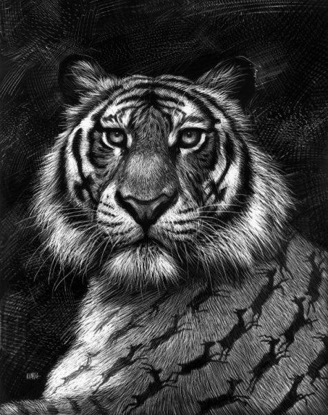 Ilustración: Ricardo.