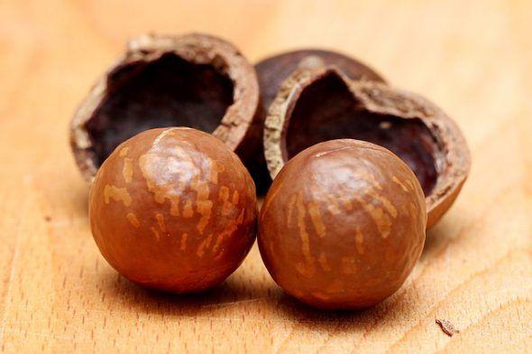 Cáscaras de avellanas que se utilizan como combustible. Foto: Pixabay.