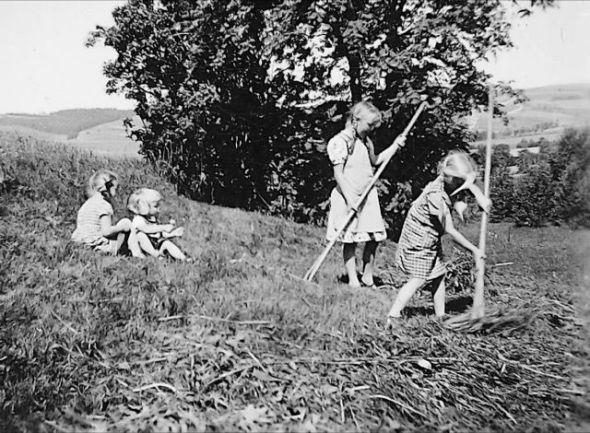 Una imagen del libro El prado de Rosinka.