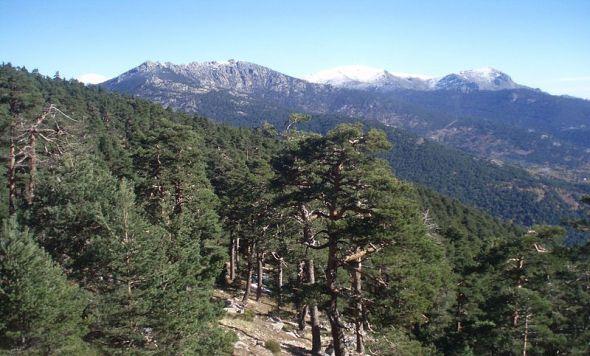 La Sierra de Guadarrama. Foto: Creative Commons.