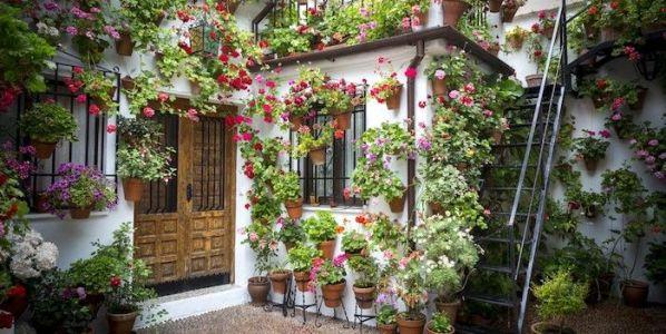 Primavera en un patio andaluz. Foto: Pxhere.