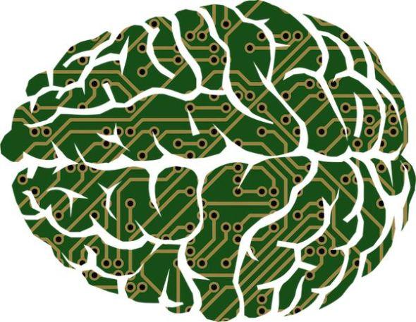 El hemisferio izquierdo del cerebro no puede analizar las cosas de forma global. Ilustración: Pixabay.