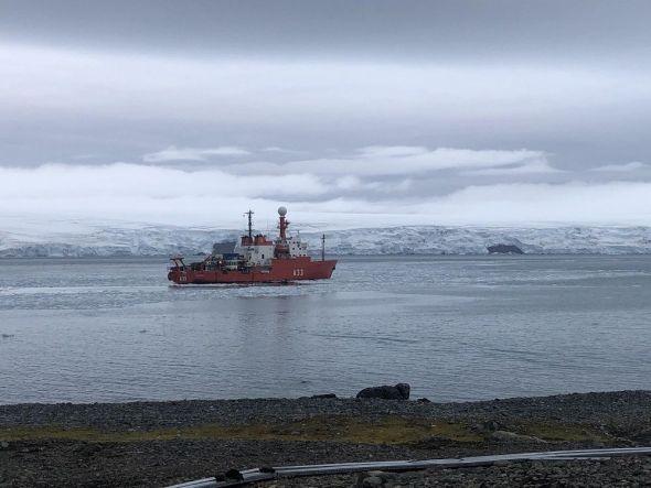 Las aguas frías de la Antártida son fundamentales para la corrientes oceánicas en todo el planeta y su cambio afecta a ecosistemas muy alejados.