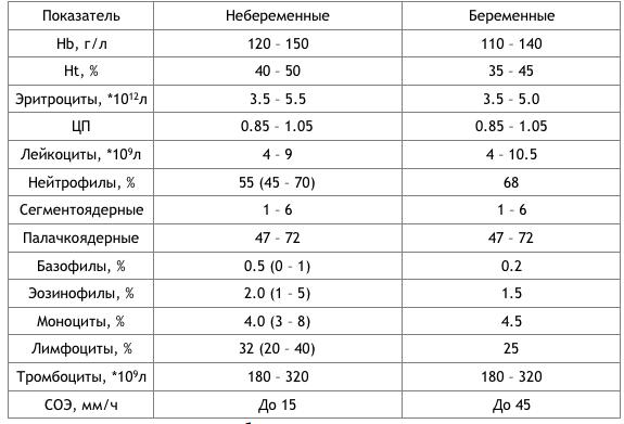 На у норма крови беременных анализ эритроциты анализе плазматические крови в 4 клетки общем
