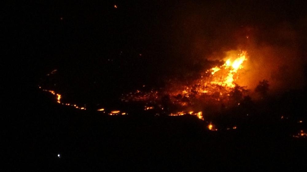 Elazığ'da orman yangını, müdahale sürüyor