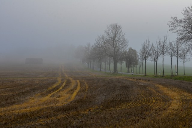 Nebel_N