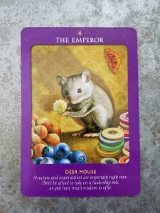 deer-mouse-the-emperor