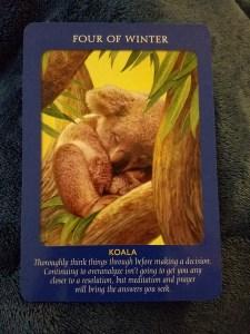 four-of-winter-Koala-tarot-card