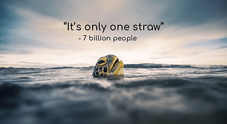 Say Bye Bye To Plastic Straws And Welcome Reusable