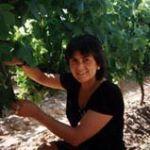 IEC#6: Enólogos volantes y sus vinos