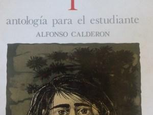 Poesía Chilena I