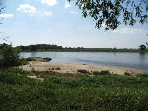 Die Wahrheit über den geplanten Elbe-Saale-Kanal