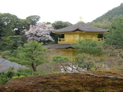 19 107 - Kinkaku-ji - Kyoto