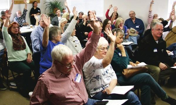 Elbert County Democrats choose candidates ...