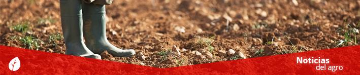 AGRO Noticias sobre agricultura
