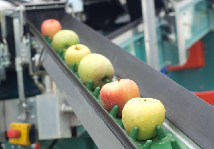 productos orgánicos para post cosecha