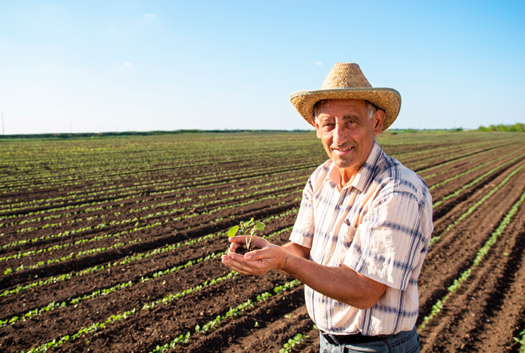 agricultor-mexicano