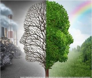 Ambiente saludable condiciones de vida y bienestar