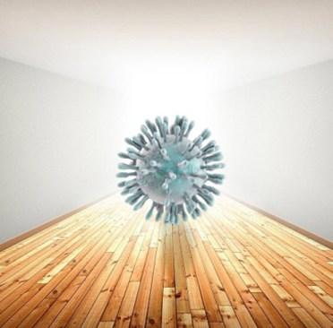 Pongamos en perspectiva el brote por un nuevo coronavirus