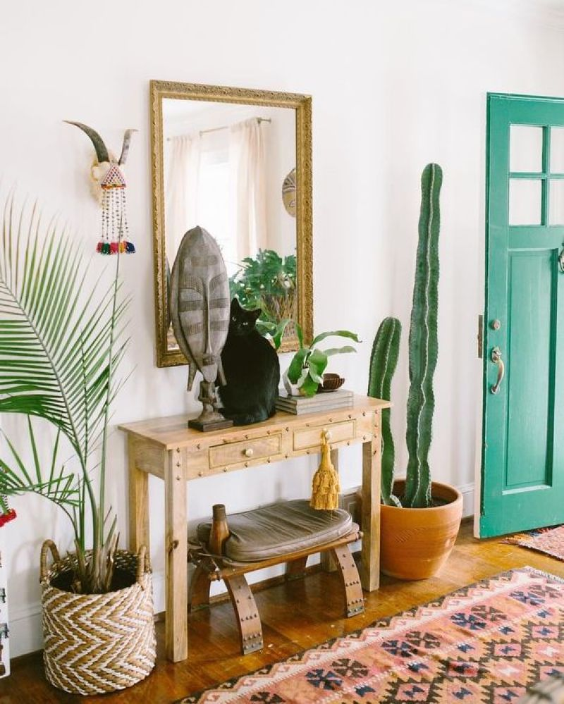 Euphorbia-Ramificada-plantas-interior-sobreviven
