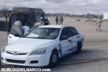 Los cárteles de la totoaba, la mafia china y los grupos criminales mexicanos que destruyen la fauna buscando la cocaína del mar