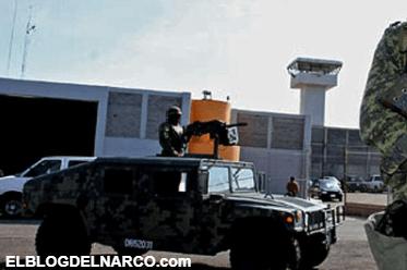 Norma fue detenida por militares y torturada por Los Zetas