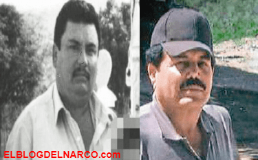 """""""El Mayo Zambada no importa, Aureliano Guzmán Loera, apodado El Guano es el jefe""""."""