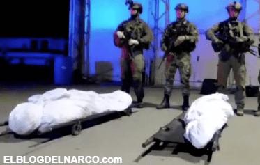CJNG pierde a su principal socio y proveedor de droga en Colombia; abaten a 'David'