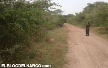 Ejecutan en el Istmo de Oaxaca al hijo del periodista Bernardo Henestroza