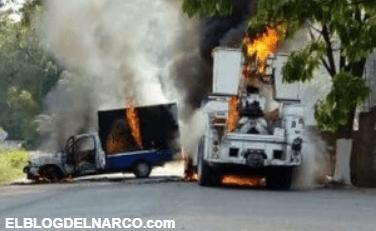 La guerra entre Los Viagra y el CJNG obligó a desalojar familias y suspender clases en Michoacán