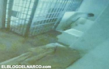 Liberan a abogado ligado a fuga de 'El Chapo'