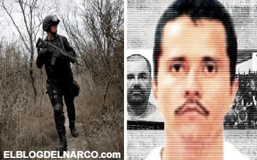 Los Viagra, la familia criminal que se disputa Michoacán con El Mencho