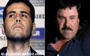 """""""El Chapo"""" Guzmán no es un mito, dice """"El Vicentillo"""""""