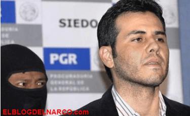 """""""Vicentillo"""" Zambada... el capo que impuso su estilo elegante a los 'narcojuniors' y testigo clave contra 'El Chapo' Guzmán"""
