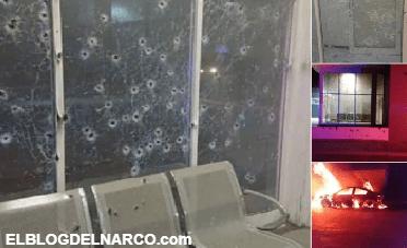"""""""Gente Nueva del Tigre"""" los narcos que dispararon y quemaron comandancia en Chihuahua (VÍDEO)"""