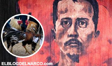 Exhiben las ilícitas apuestas de El Mencho en peleas de gallos