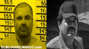 La historia de los Jefes de jefes Ismael 'El Mayo' Zambada y Joaquín Guzmán Loera del Cartel de Sinaloa