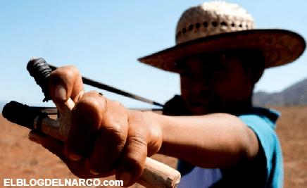 El drama del narco en México, niños soldados entrenan para enfrentar a sicarios