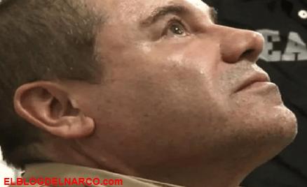 Él es el sanguinario narco que reemplazaría al Chapo Guzmán