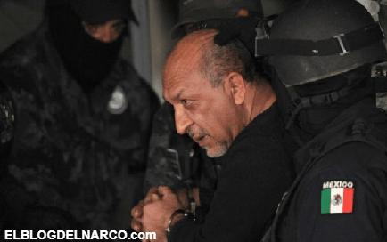 Dicen que el cartel La Familia Michoacana ya no existe, EEUU continúa desmantelando sus células