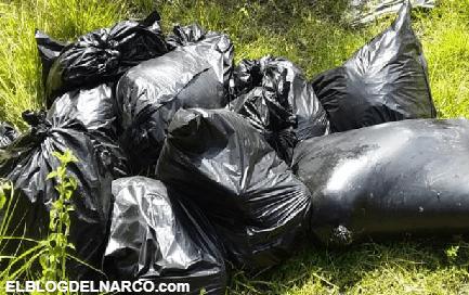 Sicarios dejan macabra carnicería en 12 bolsas repletas de cuerpos destazados junto a un torso desmembrado en Veracruz (FOTOS)