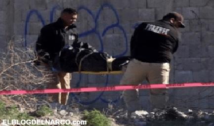 Hallan aterradora carnicería dentro de 15 bolsas repletas con restos humanos en Zapopan, Jalisco