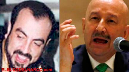 Arturo Beltrán Leyva El Barbas vivía en propiedad de Carlos Salinas de Gortari en Acapulco