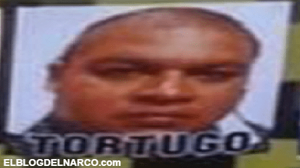 Confirman captura en Celaya de El Tortugo Jefe de plaza de San Miguel de Allende y segundo al mando del Cartel de Santa Rosa de Lima
