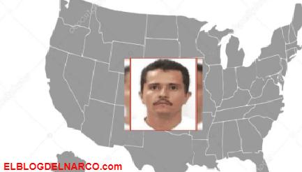 Seis cárteles mexicanos envenenan a estadounidenses, DEA los considera una amenaza a seguridad