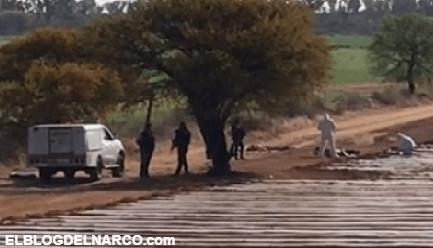 Padece Zacatecas jornada de narco-violenta en 48 horas