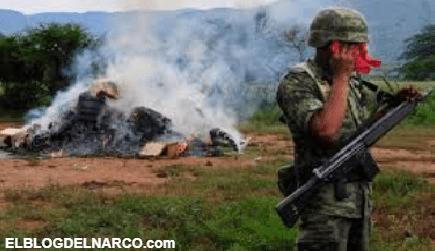 Los narcoplantíos de el Cártel de Sinaloa y el Cártel de Jalisco Nueva Generación
