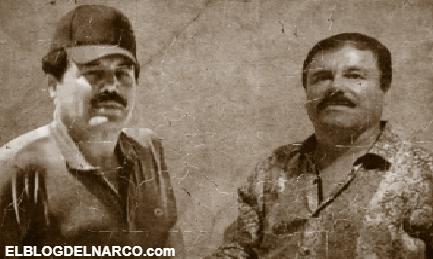 El Mayo Zambada así logro sacar de la ruina al Chapo y lo ayudó a convertirse en narco magnate