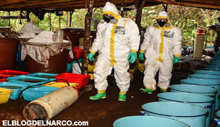 Recluta Cártel de Sinaloa profesores universitarios para producción de droga sintética