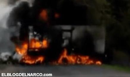 Narcobloqueos y enfrentamientos sacuden el municipio de Aguililla, Michoacán